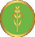Agriculture Téléformation